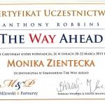 Certyfikat_Robbins